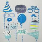 Baby 1st Birthday Party Photo Booth Props Little Boy Girls N